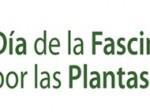Fracinacion_por_las_plantas1
