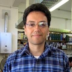 Javier A. Díaz UMAG
