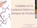 foto1 Webinar Lactancia Materna