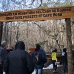 Entrando al Circuito Bosques en Miniatura del Cabo de Hornos