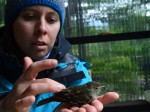 La investigadora Rocío Jara trabajó durante tres periodos de primavera y verano en la isla Navarino, especialmente en el Parque Omora, para monitorear el proceso de nidificación de las aves y ver la intervención de los depredadores.