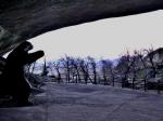 Cueva del Milodón, Puerto Natales. Foto Max Ulloa.