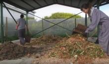 planta compostaje